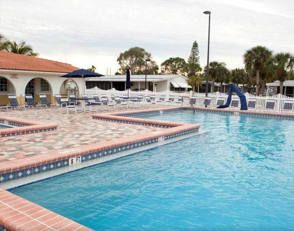 Ace Dog Training | Capecoral, FL 33990